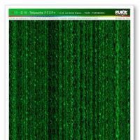 SG-10-Tekusucha-WEB-COLORS-RGB.jpg