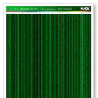 SG-6-Tekusucha-WEB-COLORS-RGB.jpg