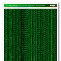 SG-8-Tekusucha-WEB-COLORS-RGB.jpg